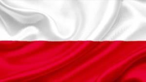 Polski Prawnik New Port Richey